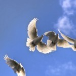 6 Key Things to Know About the Holy Spirit
