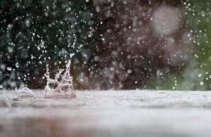 drop-of-water-909130_1280